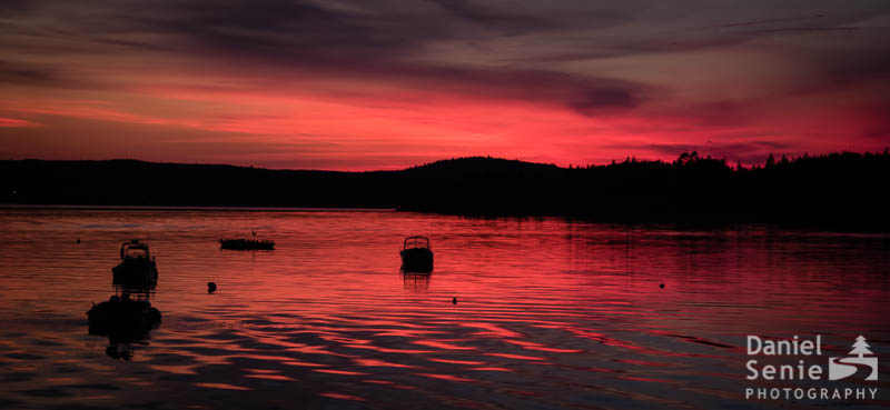 Sunset Blaze
